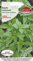 Bazylia Cytrynowa (Ocimum basilicum citriodora) 0,1g