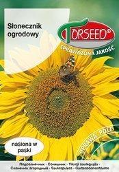 Słonecznik ogrodowy 10 g