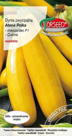 Dynia zwyczajna – Cukinia Atena Polka F1 żółta 2 g